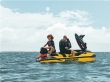 immagine 4 di SEA DOO RXT-X RS 300 MILLENIUM YELLOW
